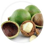 olej-macadamia